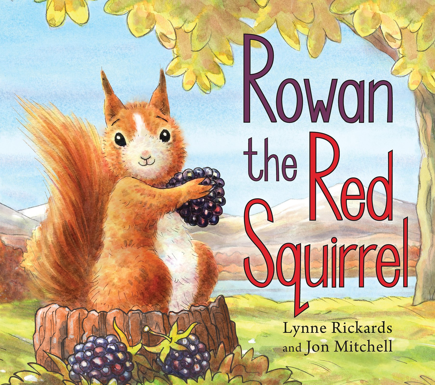 rowan-the-red-squirrel-picture-kelpies