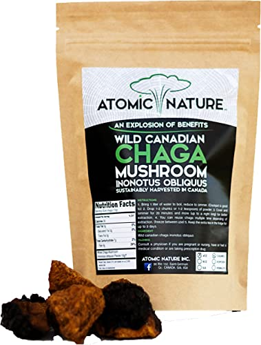 4oz Raw Organic Wild Chaga Mushroom Tea Chunks 100 Natural Hand-Harvested Canadian Forest Chaga Superfood, Healthy Immune System Booster Antioxidant, Perfect Size for Brewing