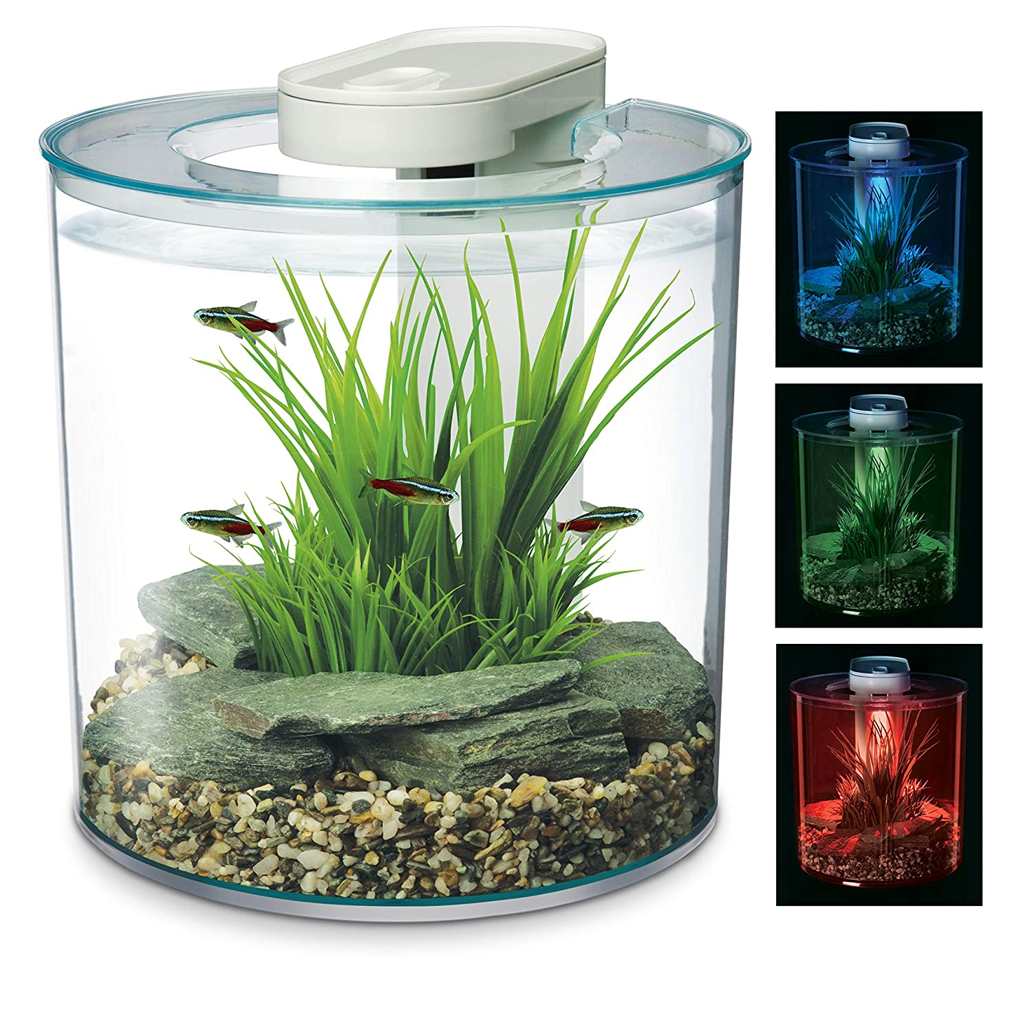 Marina 360 Aquarium with Remote Control LED Lighting, 10 Litre, Multicolour