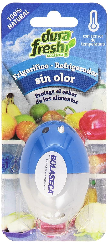 Bolaseca - Huevo asorbeolores para frigoríficos: Amazon.es ...
