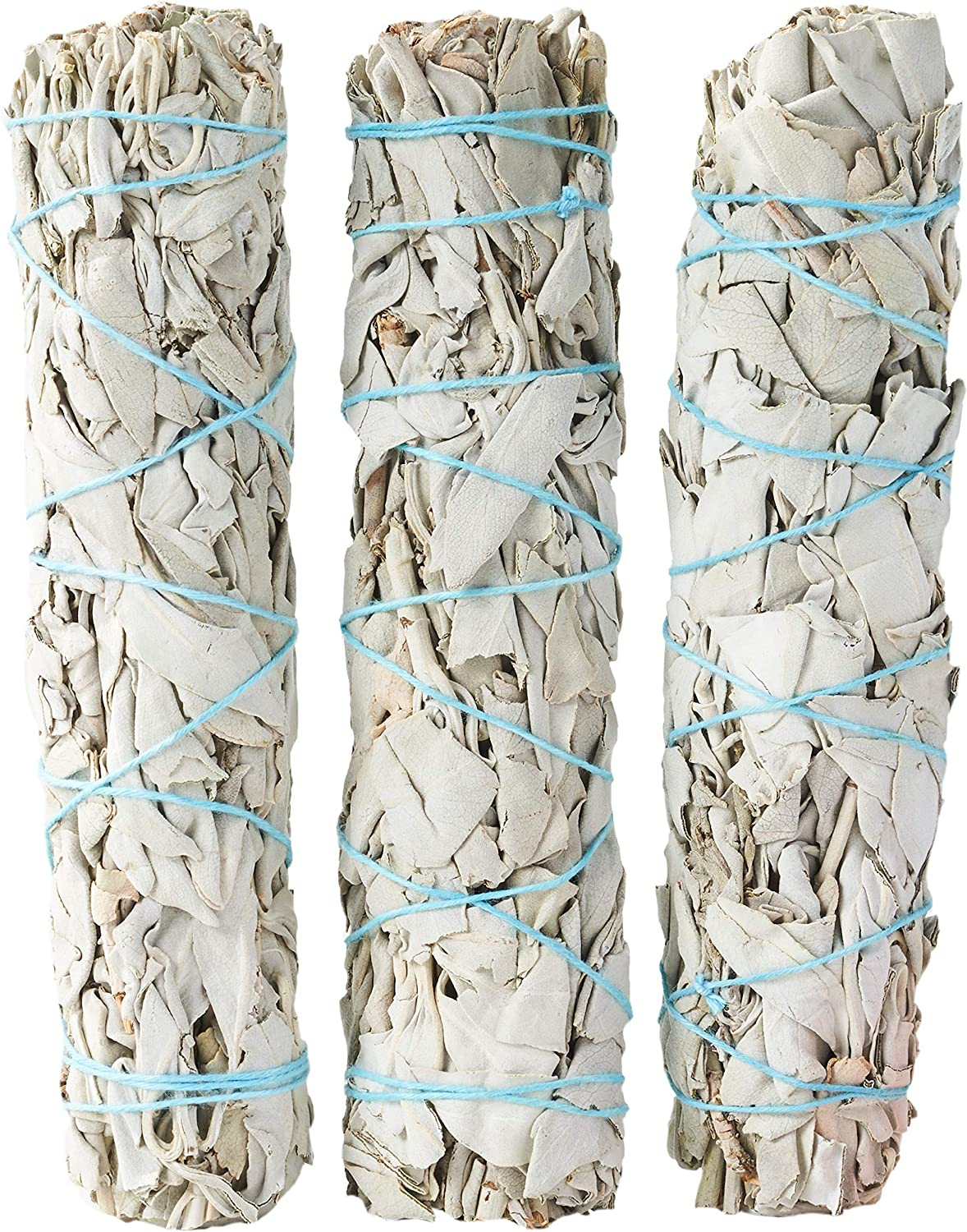6-Inch Medium - Large White Sage Smudge Sticks ~ Sustainably Harvested ~ for Cleansing & Smudging with Instructions (3 Pack)