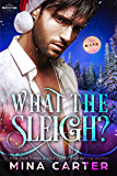 What the Sleigh? (Paranormal Protection Agency Book 8)
