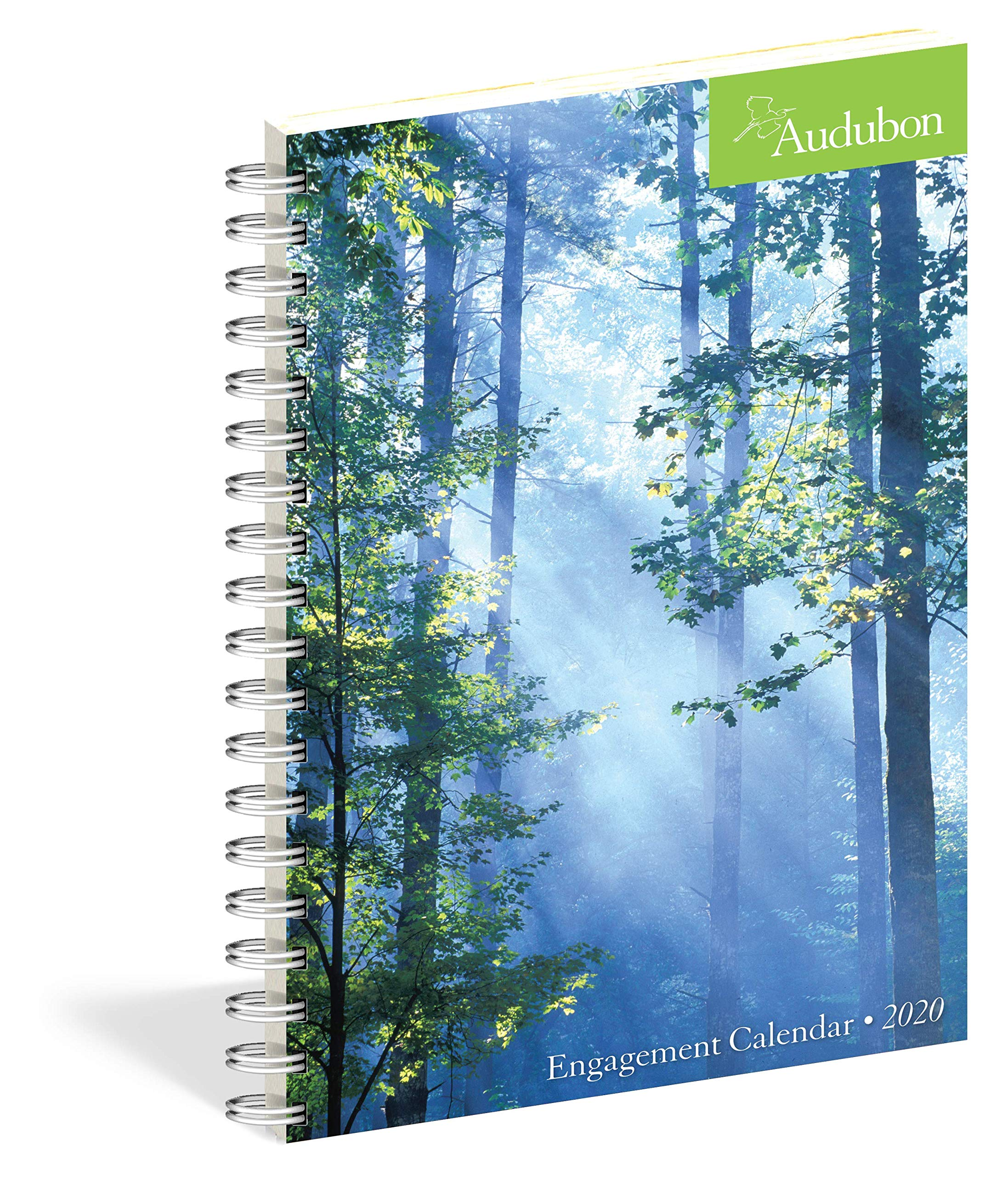 Amazon.com: Audubon Engagement Calendar 2020 (9781523506170 ...