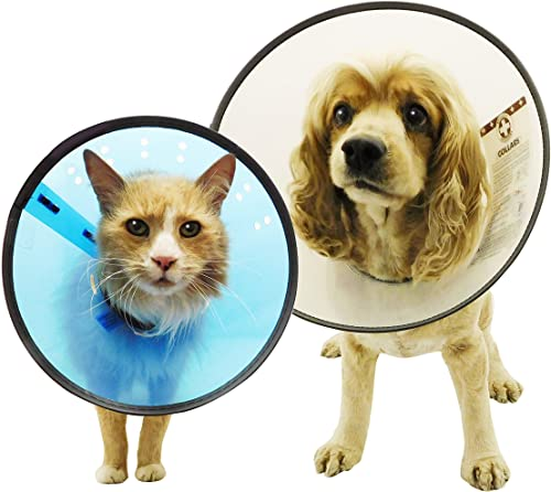 Remedy-and-Recovery-E-Collar,-X-Large