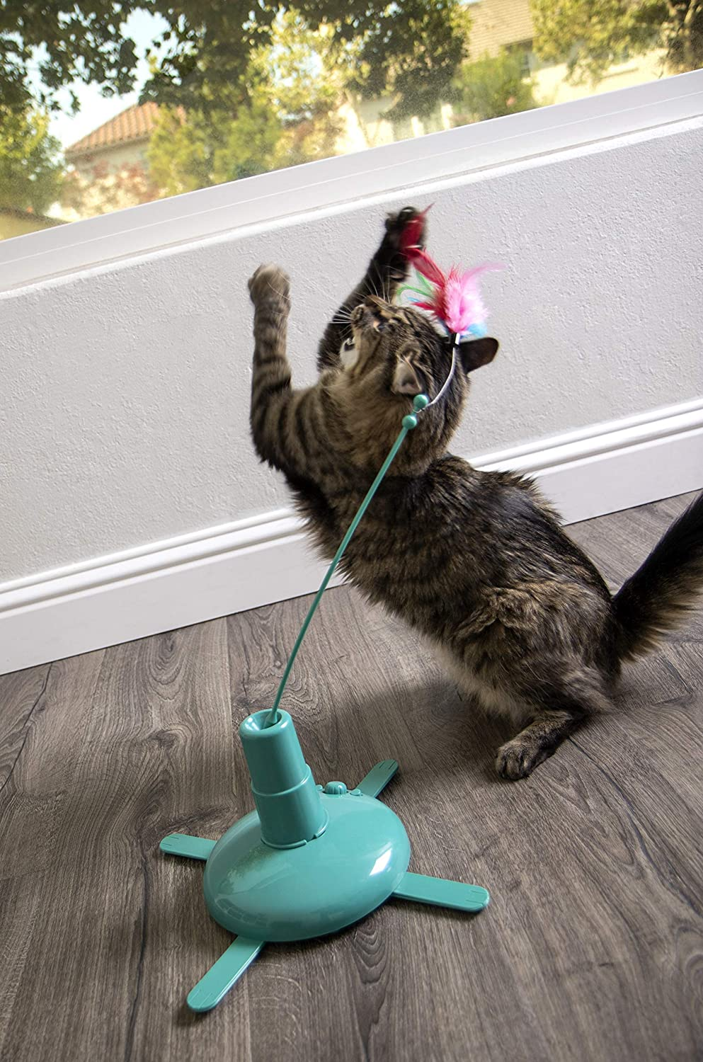 Motion Cat Toy Automated Activity Toy: Amazon.es: Productos para mascotas