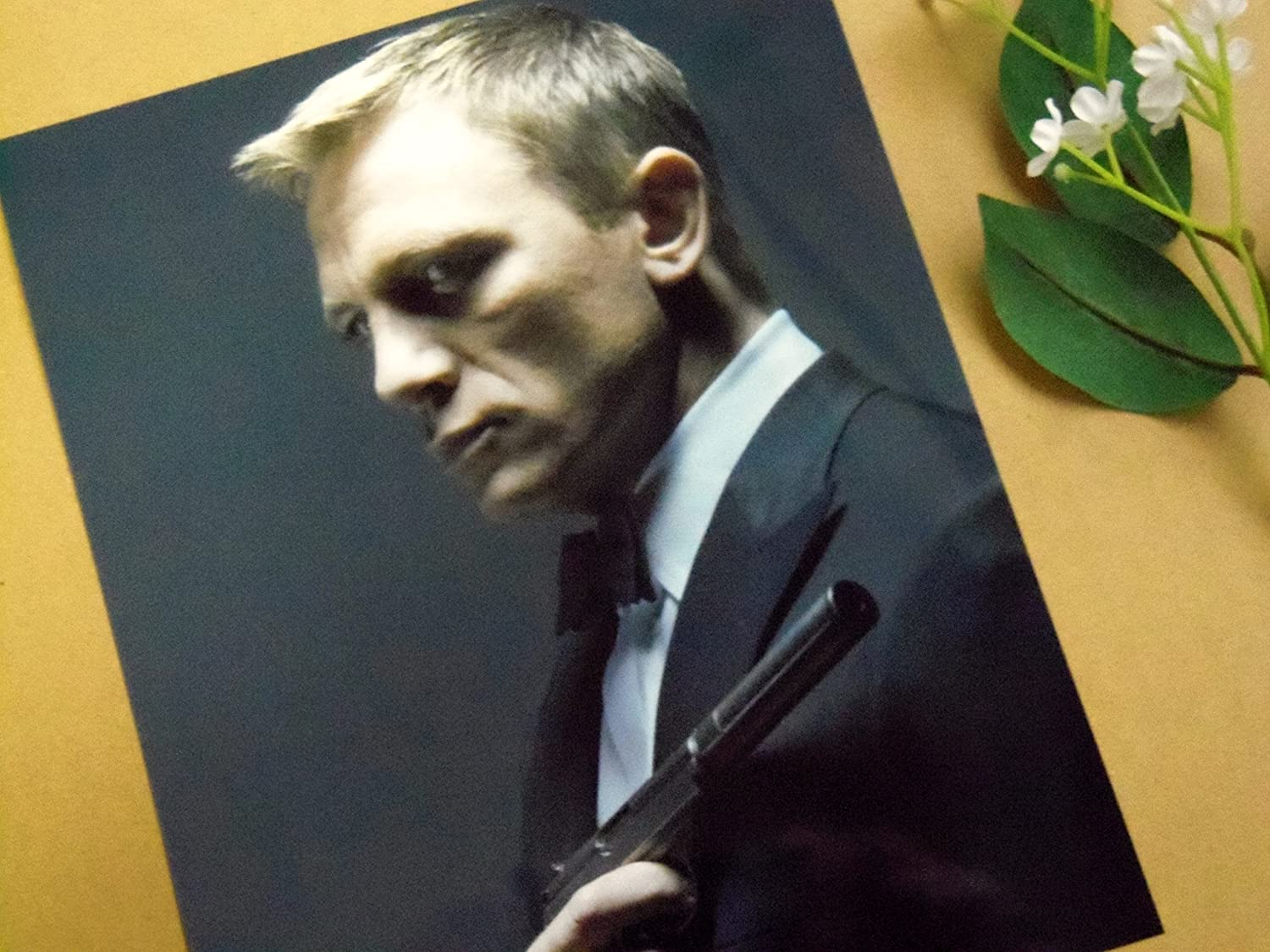 Daniel Craig Photo 8x10,sp0670