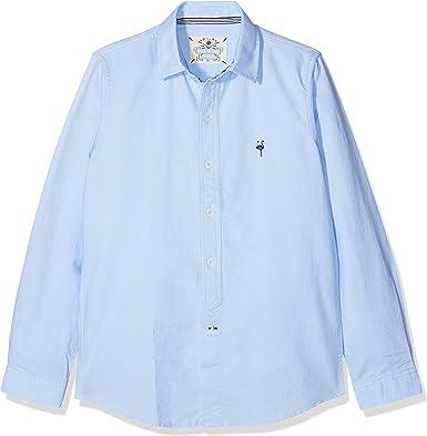 EL FLAMENCO Basica Camisa, Azul (Celeste), (Tamaño del Fabricante:16) para Niños: Amazon.es: Ropa y accesorios