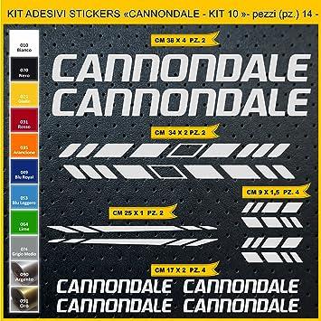 Kit Pegatinas Stickers Bicicleta Cannondale- Kit 10-14 Piezas- Bike Cycle Cod. 0923 (090 Argento): Amazon.es: Deportes y aire libre