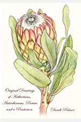 Colour Drawings of Anthuriums, Antirrhinums, Proteas and a Penstemon (Gift Books Book 1) Kindle Edition