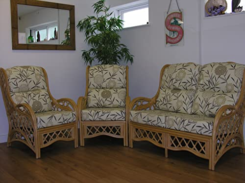 cane conservatory furniture cushions only full suite. Black Bedroom Furniture Sets. Home Design Ideas