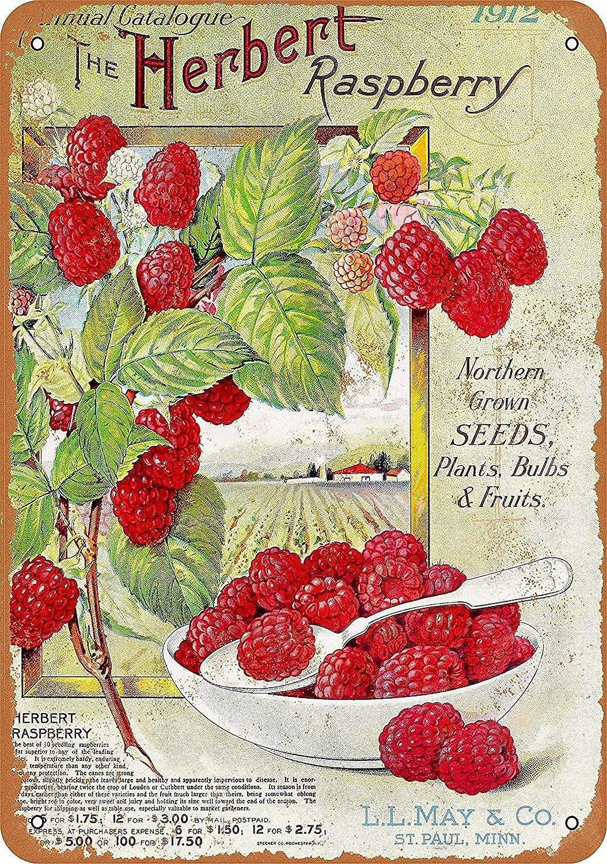 Ufcell Vintage Retro 8x12 Sign 1912 Herbert Raspberries Funny Fruits Vegetables Food Sweet Summer Wall Decor Home Decor Novlety Tin Metal Sign