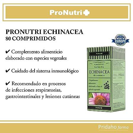 PRONUTRI - PRONUTRI Echinácea 80 comprimidos: Amazon.es: Salud y cuidado personal