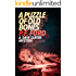 A Puzzle Of Old Bones (Dave Slater Mystery Series Book 10)