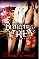 Beautiful Prey 3: The Storm Series: BWWM Romance Kindle Edition