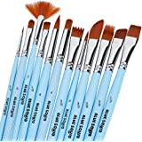 Blue Squid Watercolor Brushes Paint Brush Set, 12 Artist Paint Brushes, Perfect for Face Painting, Round Pointed Tip Nylon Ha