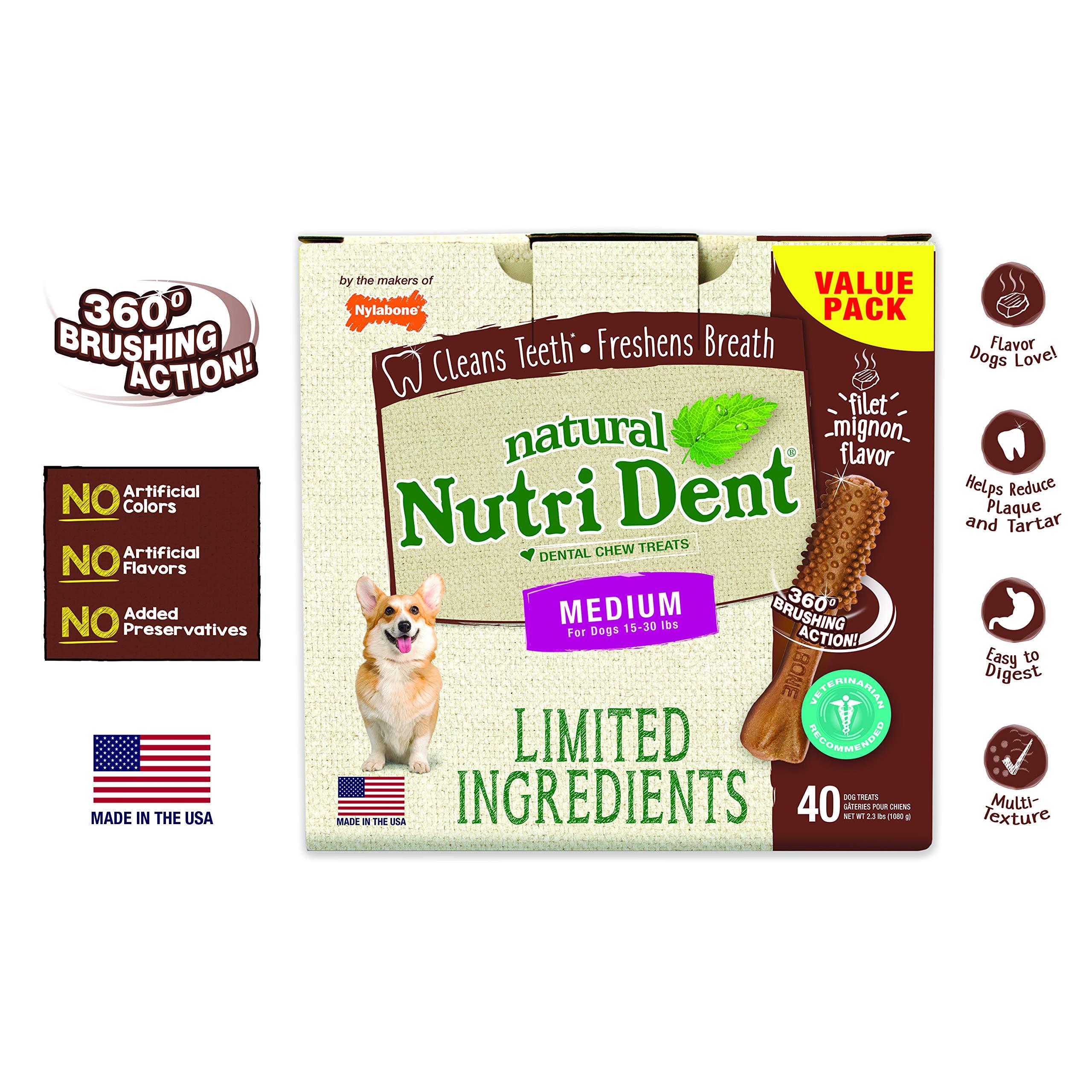 Nylabone NutriDent Natural Dental Chew Treats Filet Mignon, Medium, 40 Count