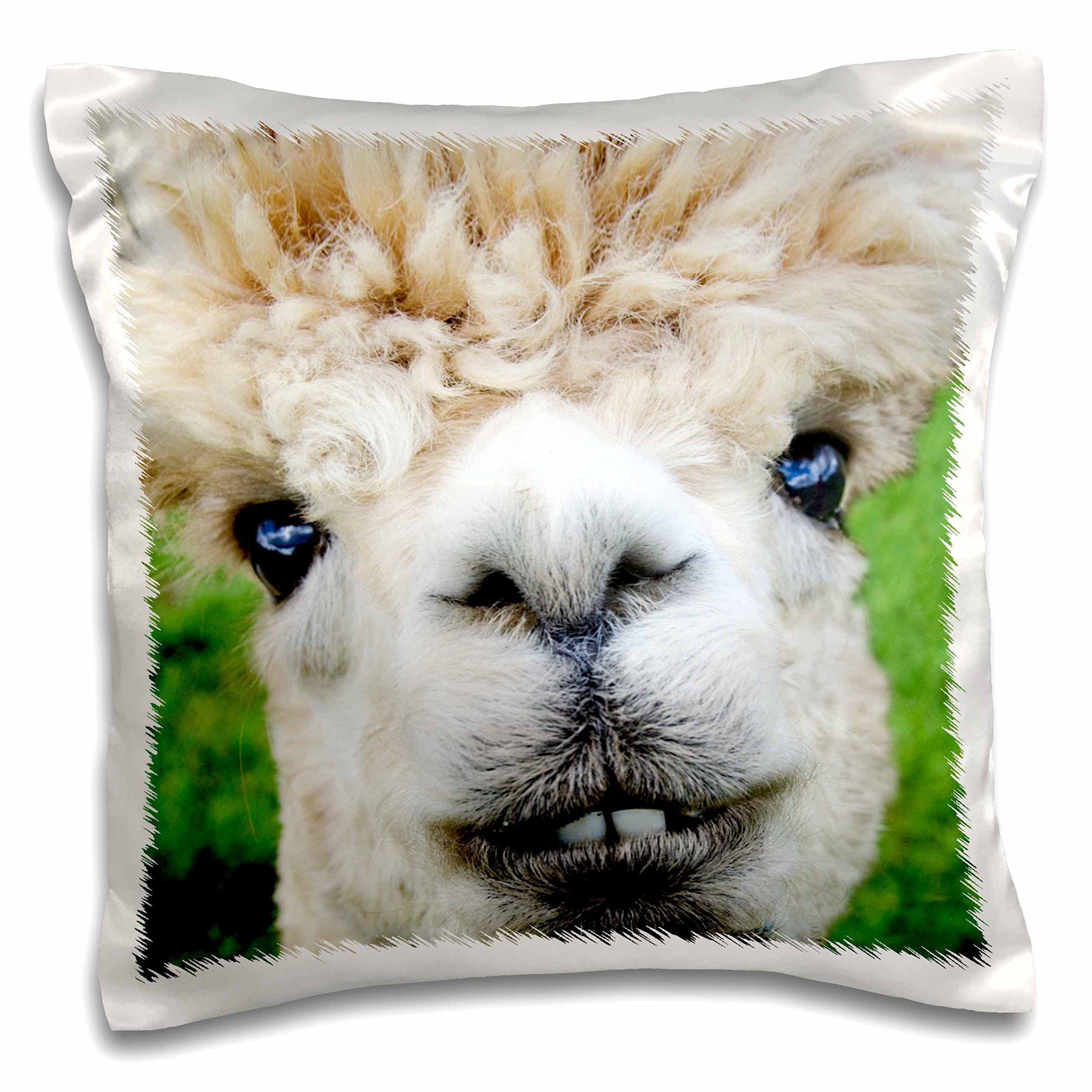 3D Rose Alpaca Lama South America White Pillow Case, 16'' x 16''