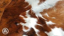 Brindle Tricolor Cowhide Rug XL APPROX 6-6.5ft x 8-7.5ft 180cm x 240cm - Top Quality