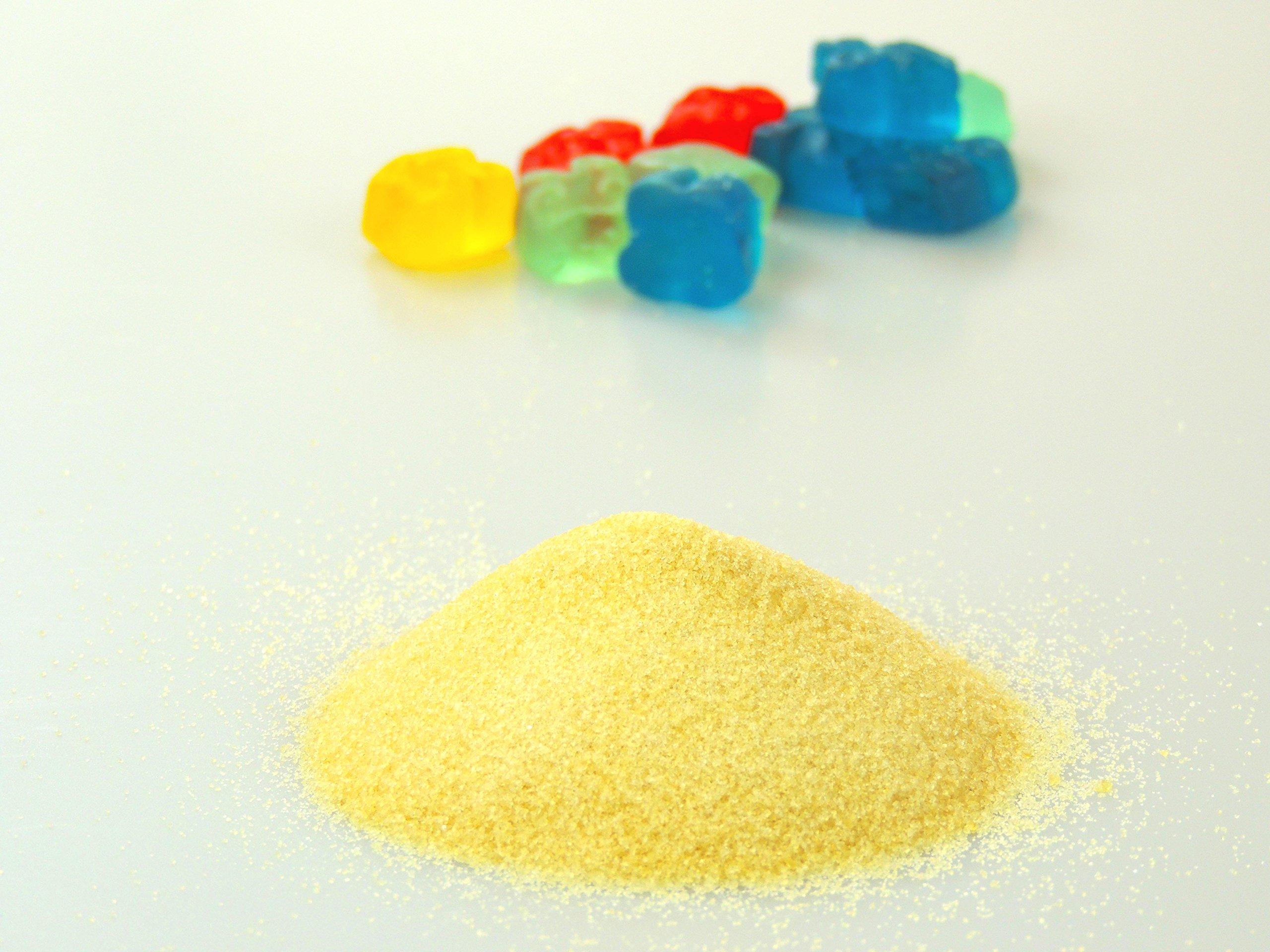 Protein Essentials Beef Gelatin Powder, Unflavored, Pasture-Raised, Grass Fed (16oz) by Protein Essentials