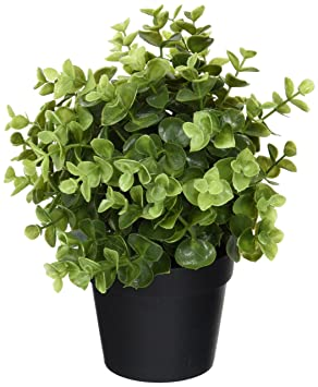 Ikea Artificial Potted Plant, Jade, 9.5 Inch by Ikea Artificial Plants at amazon