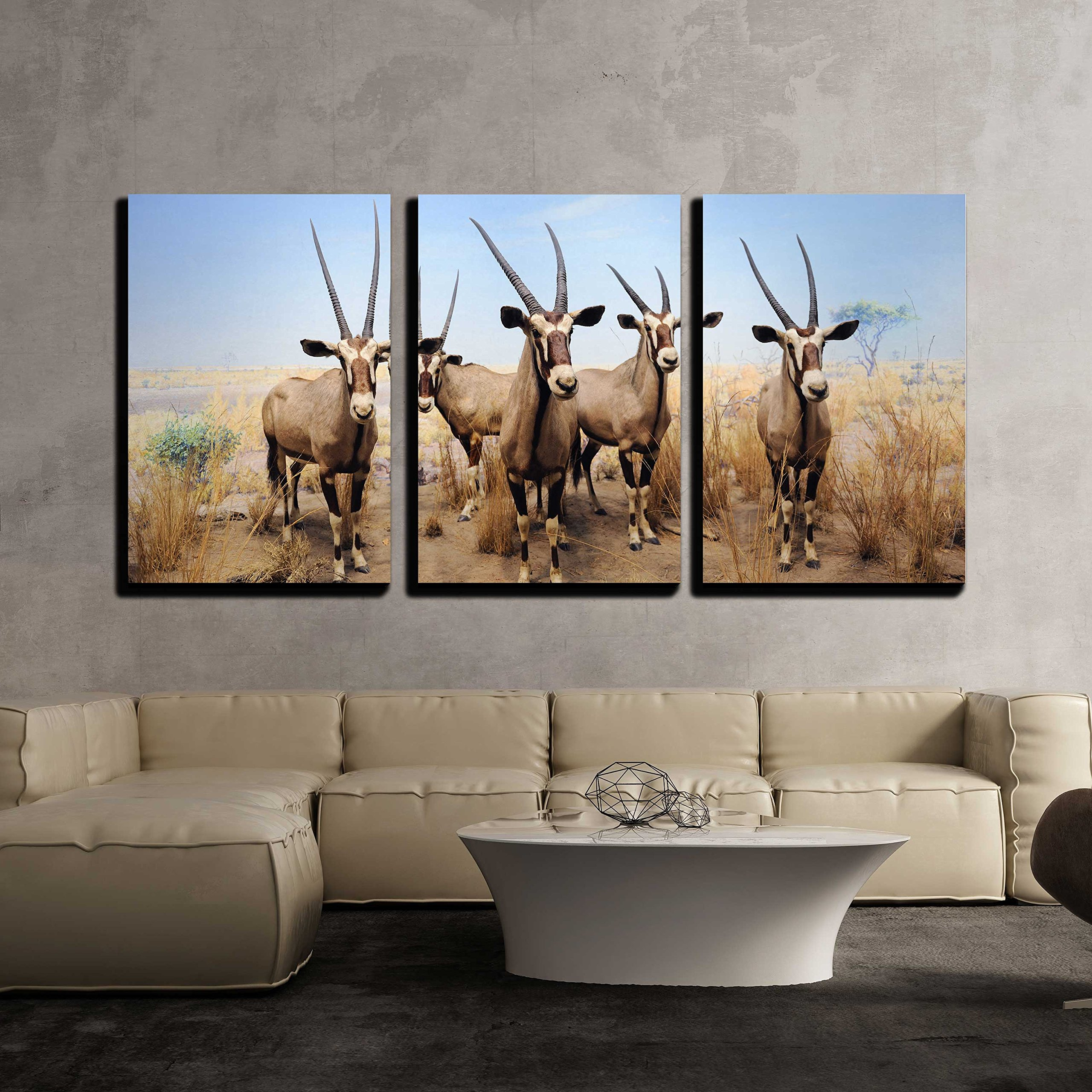 wall26 - 3 Piece Canvas Wall Art - the American Museum of Natural History in Manhattan, New York City. - Modern Home Decor Stretched and Framed Ready to Hang - 24''x36''x3 Panels by wall26