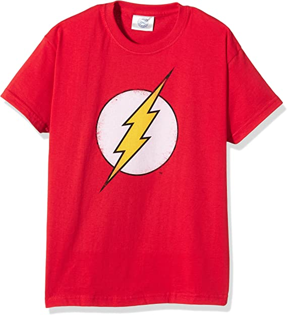 DC Comics Distressed Flash Logo Camisa Manga Larga para Niños: Amazon.es: Ropa y accesorios