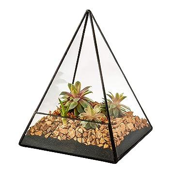 Ultra 14x14x19 Triangular Vidrio Claro Terrario Plantador Forma Geométrica Perfecta Para La Exhibición De Mesas De ...