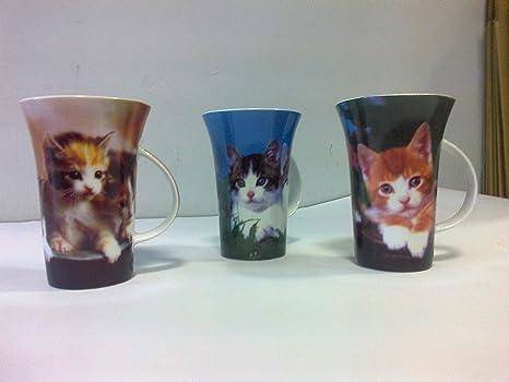 Café taza gatos