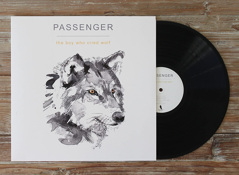 Passenger Der Junge der blinden Alarm schlug Vinyl LP