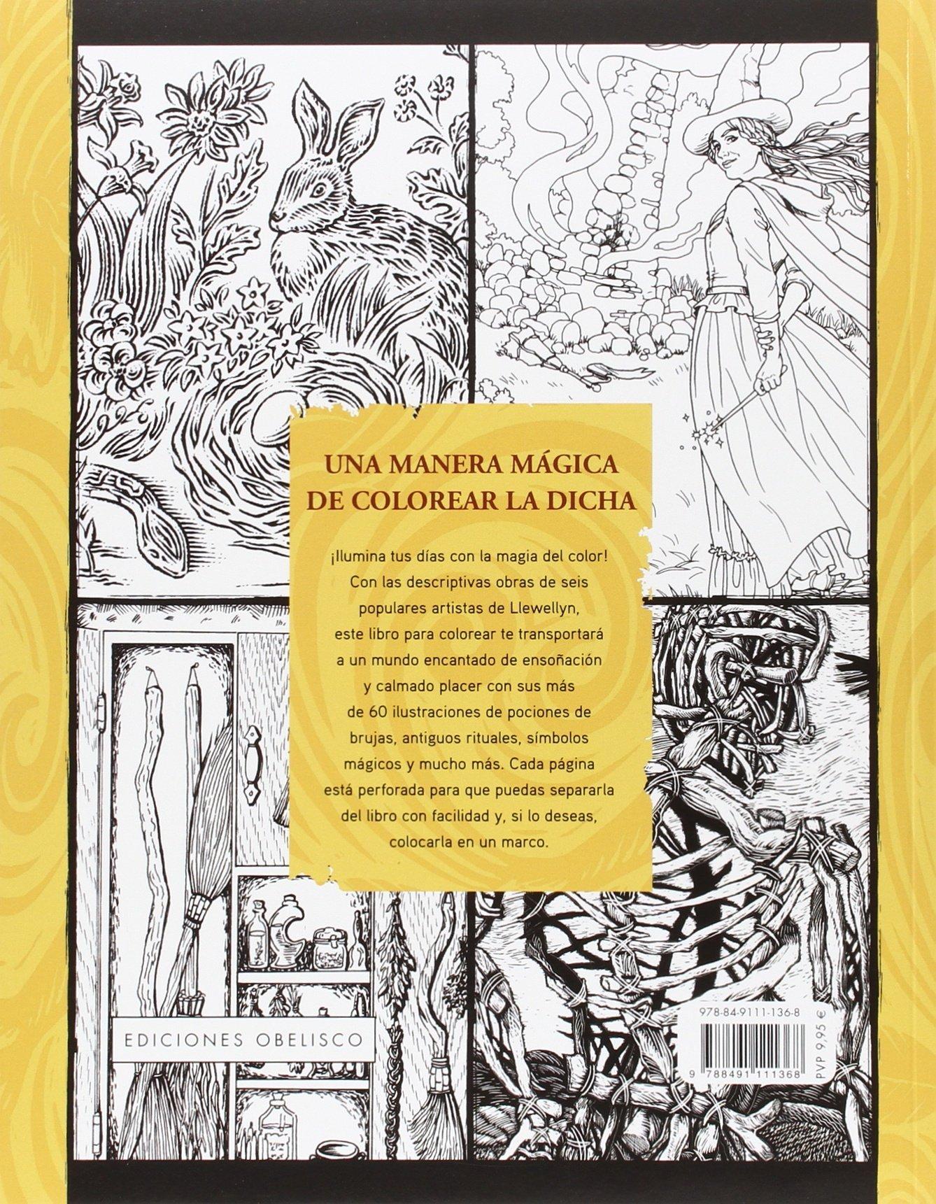 Brujas. Un libro para colorear (NUEVA CONSCIENCIA): Amazon ...