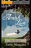 The Broken (Forbidden Amish Love Book 1)
