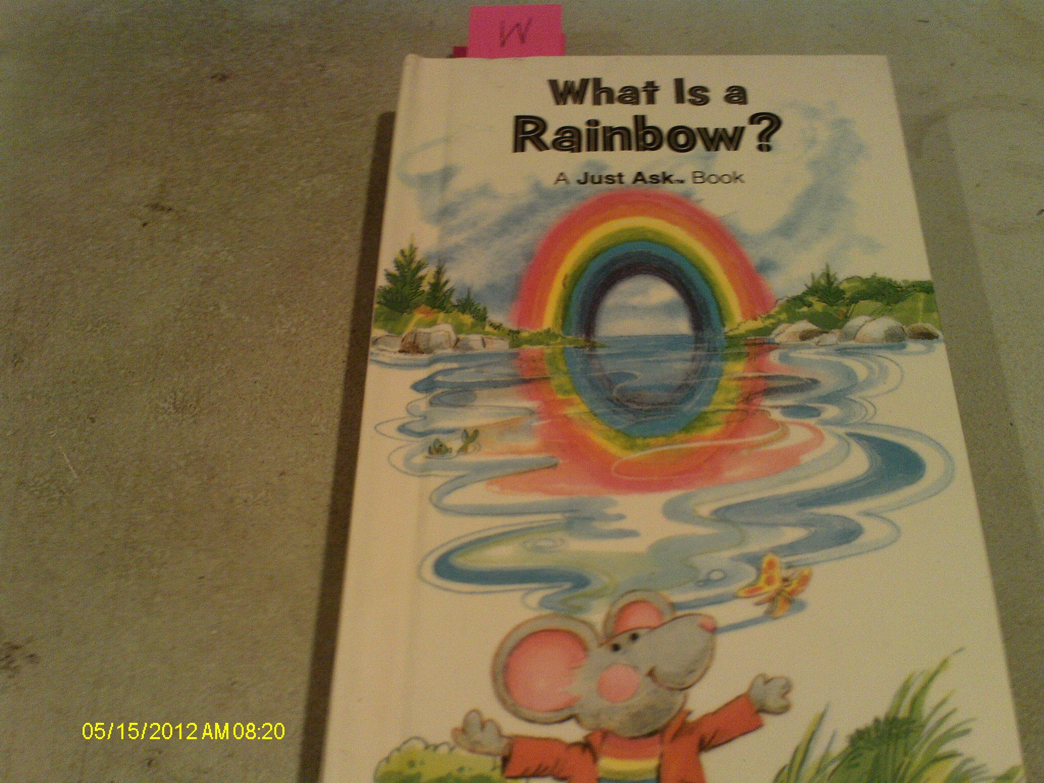 What Rainbow Just Ask Book product image