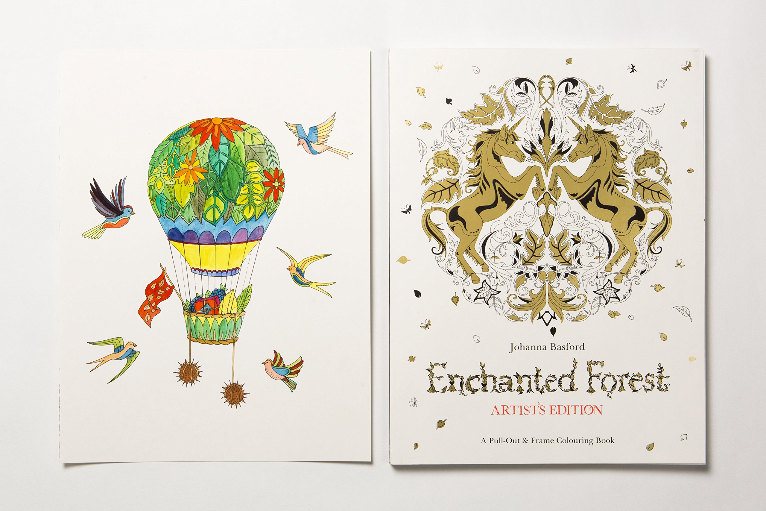 Enchanted Forest Artists Edition A Pull Out And Frame Colouring Book Bks Amazoncouk Johanna Basford 9781780677842 Books