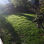 5kg rasensamen greenato dryland d rreresistenter rasen grassamen rasensaat gras grassaat amazon. Black Bedroom Furniture Sets. Home Design Ideas