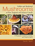 Edible and Medicinal Mushrooms of New England and Eastern Canada: A Photographic Guidebook to Finding and Using Key Species