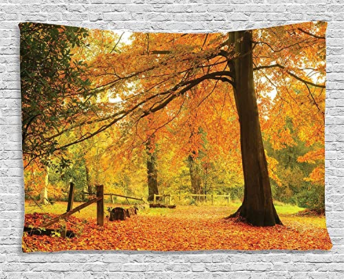 Ambesonne Forest Tapestry, Autumn Fall Forest Scene with Vibrant Colors and Pale Leaves Tranquil Peace Nature, Wide Wall Hanging for Bedroom Living Room Dorm, 80 X 60 , Orange Brown