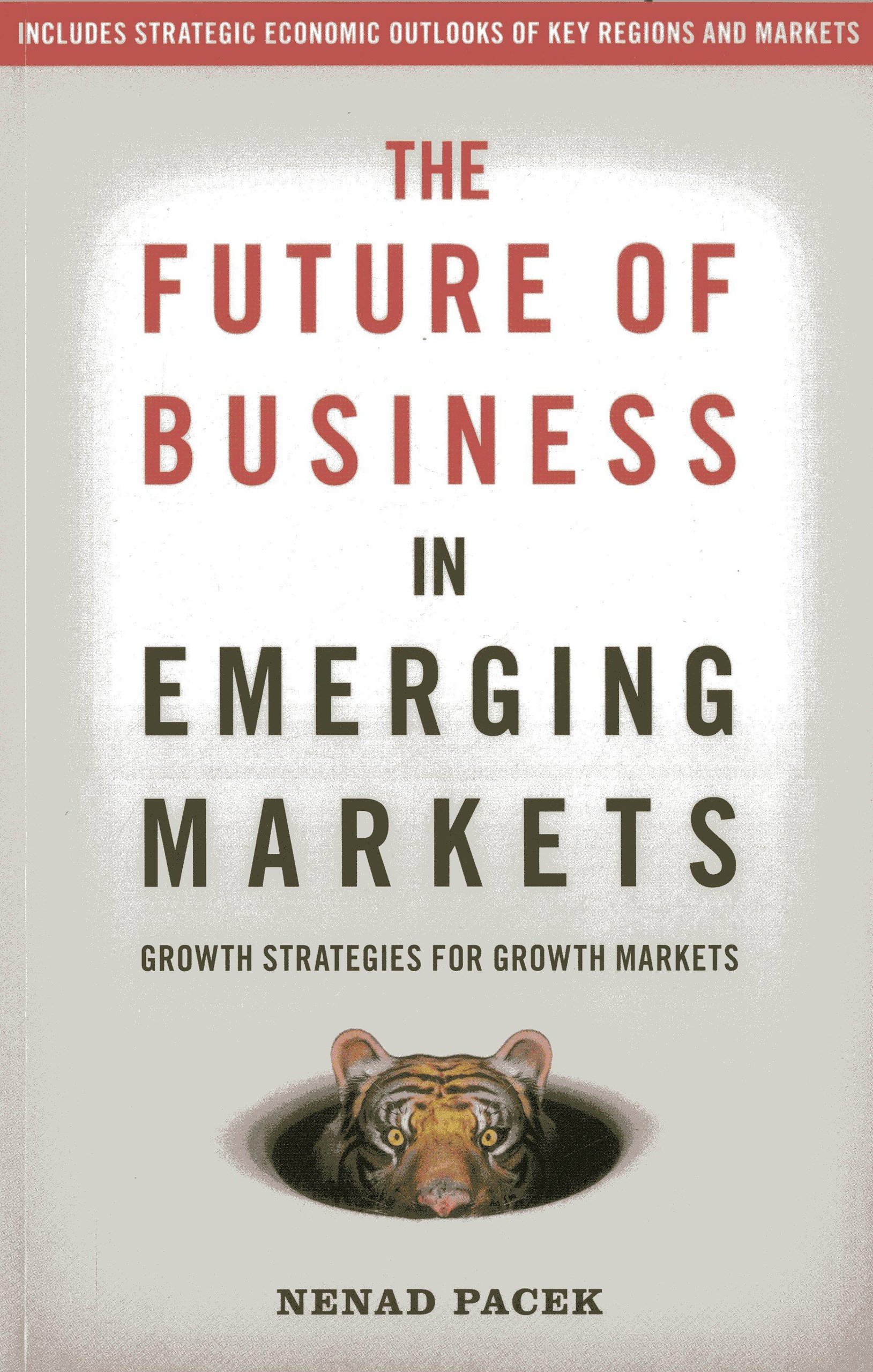 Read Online The Future of Business in Emerging Markets: The Success Factors For Market Growth In The 21St Century ePub fb2 book