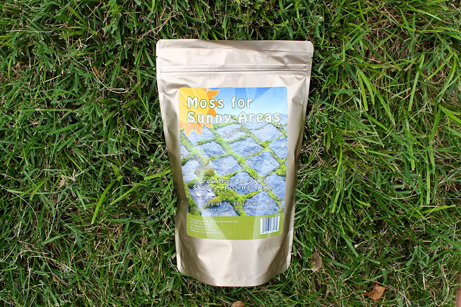 Amazon Com Moss Acres New Moss For Sunny Areas Sun Tolerant