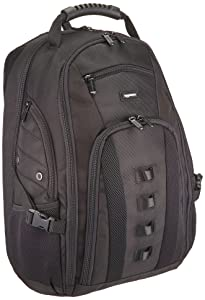 Amazonbasics Travel Laptop Backpack