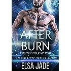 After Burn: Big Sky Alien Mail Order Brides #4 (Intergalactic Dating Agency): Intergalactic Dating Agency
