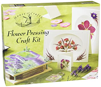 Amazon flower pressing kit toys games mightylinksfo