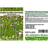 Seedeo® Große Kornblumenwiese 750 Samen