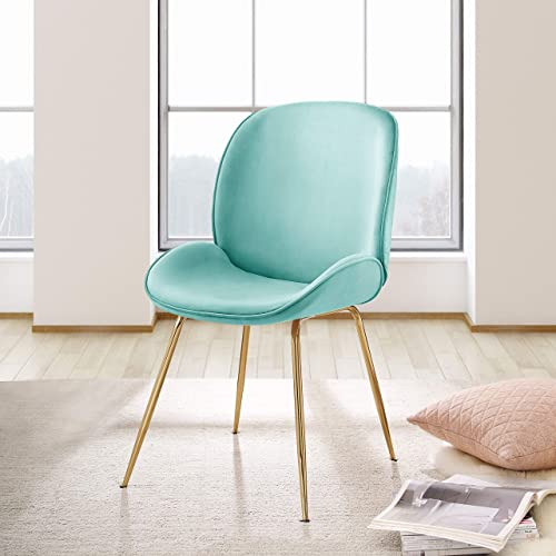 Thin Ant Comfy Dining Chair