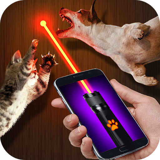Laser for cat and dog point (Pets Dot Com)
