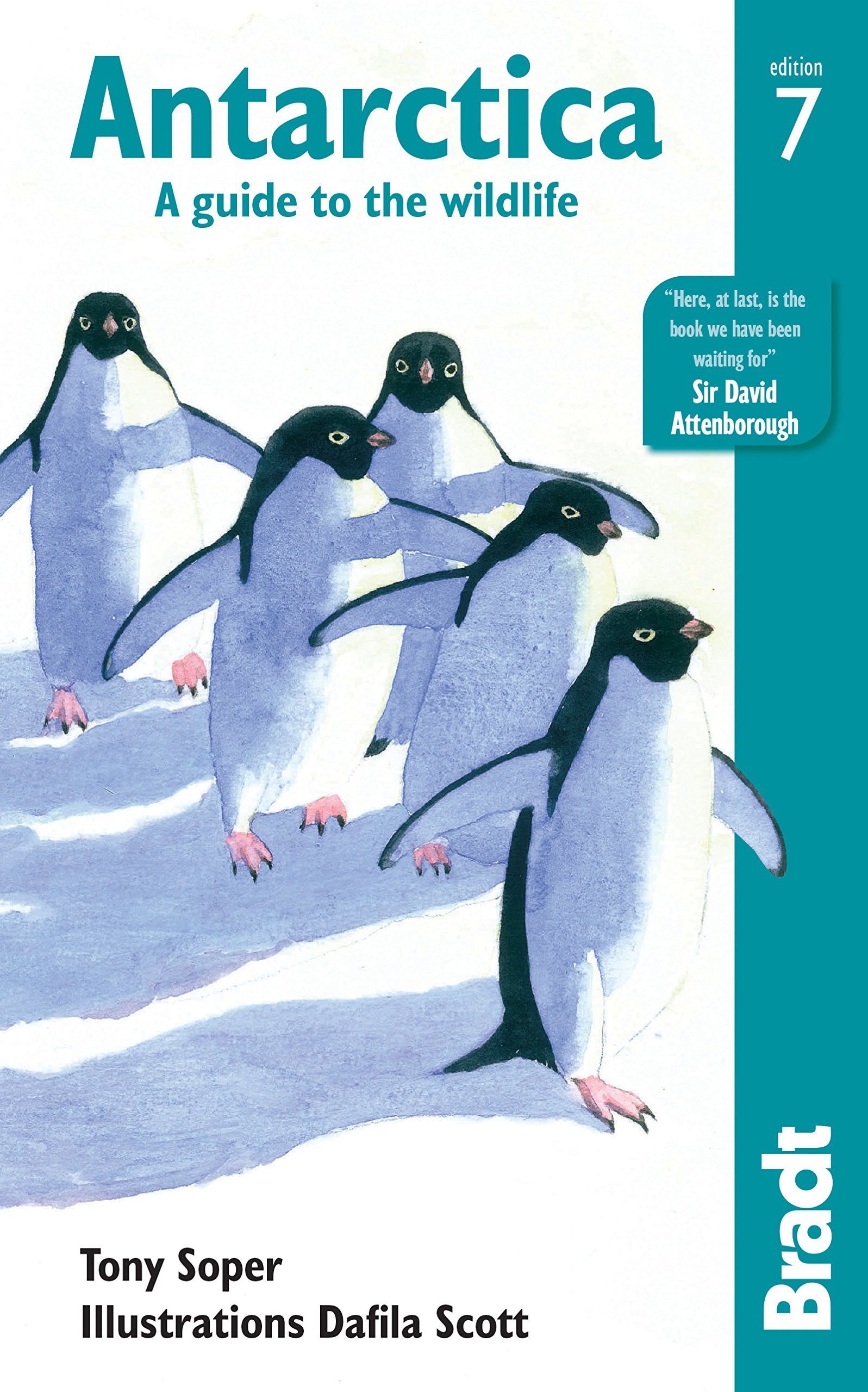 Antarctica  A Guide To The Wildlife  Bradt Travel Guides  Wildlife Guides    English Edition
