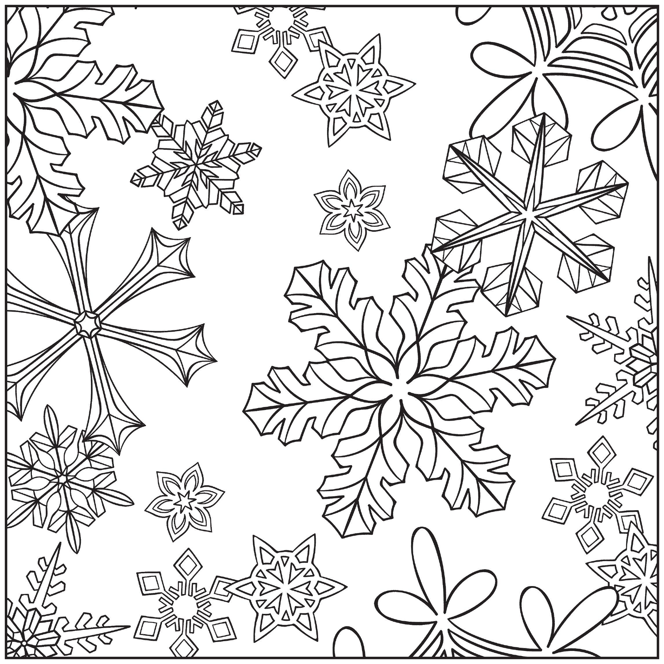 Amazon.com: Winter Wonderland Adult Coloring Book With Bonus