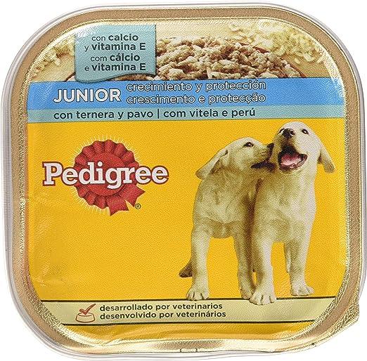 Tarrina para perros cachorros de ternera y pavo 300g | [Pack de 20 ...