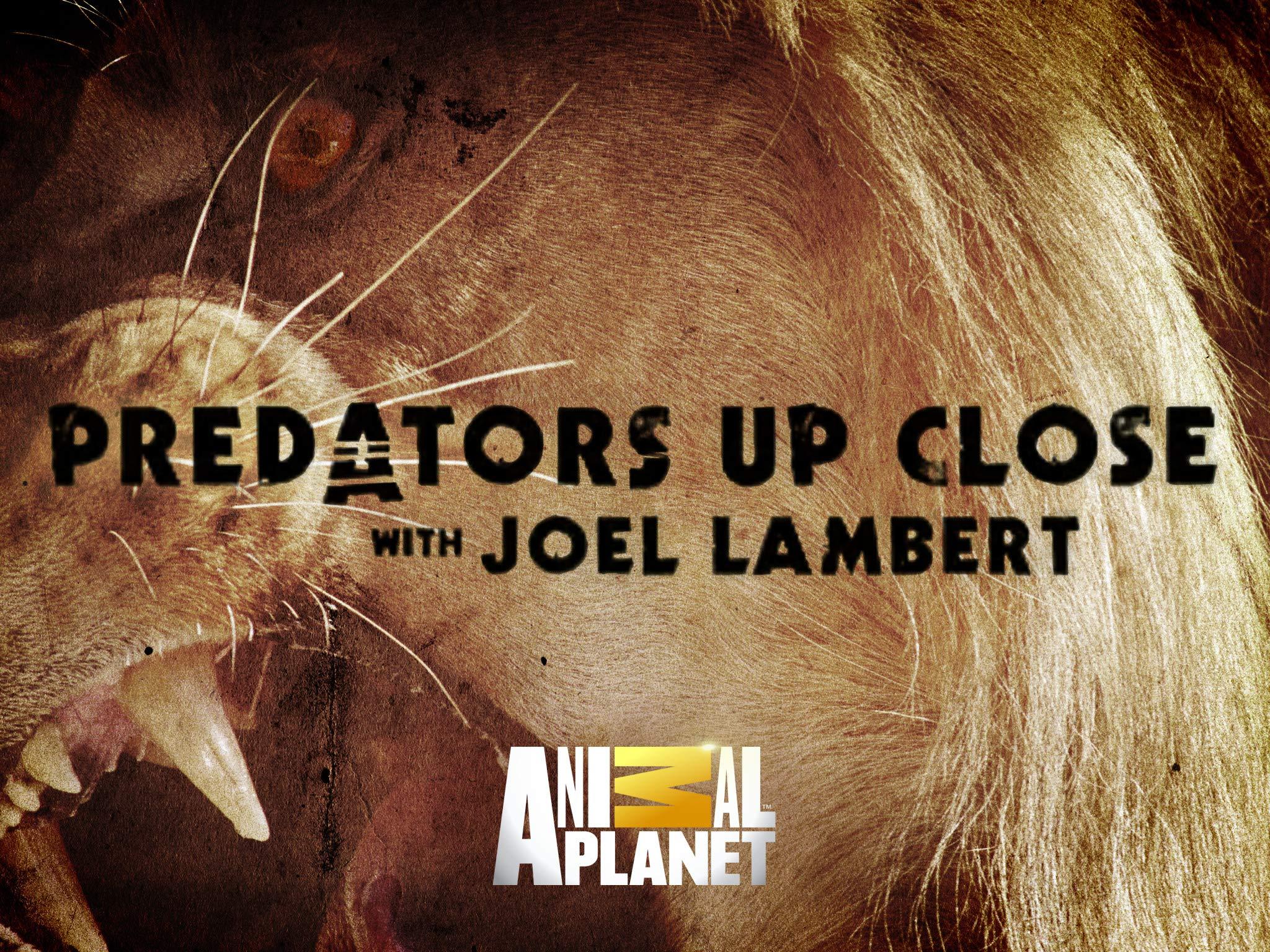 شکارچیان درنده با جوئل لمبرت (مستند)