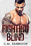 Fighting Blind: Theo (MMA Romance  Book 1)