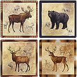 CoasterStone AS8660 Absorbent Coasters, 4-1/4-Inch, Rocky Mountain Moose Bear Elk Mule Deer, Set of 4